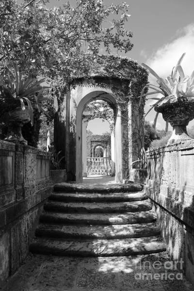 Photograph - Garden Arches Of Vizcaya - Black And White by Carol Groenen