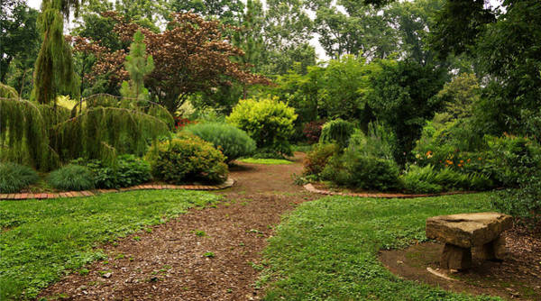 Photograph - Garden At Whitehall by Sandy Keeton