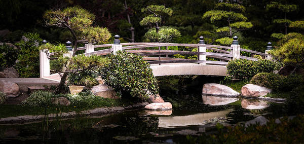 Photograph - Garden Bridge by Ed Clark