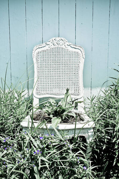 Wall Art - Photograph - Garden Chair - Baby Blue by Colleen Kammerer