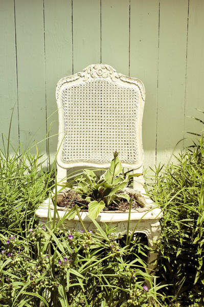 Wall Art - Photograph - Garden Chair - Celery Green by Colleen Kammerer