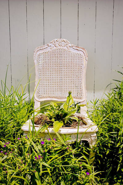 Wall Art - Photograph - Garden Chair - Misty Gray by Colleen Kammerer