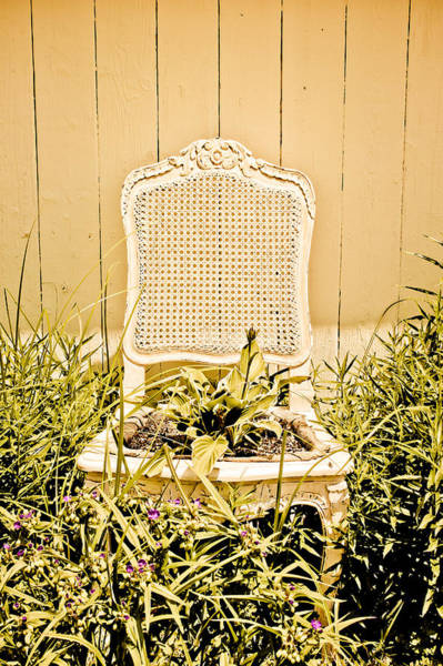 Wall Art - Photograph - Garden Chair - Straw Yellow by Colleen Kammerer