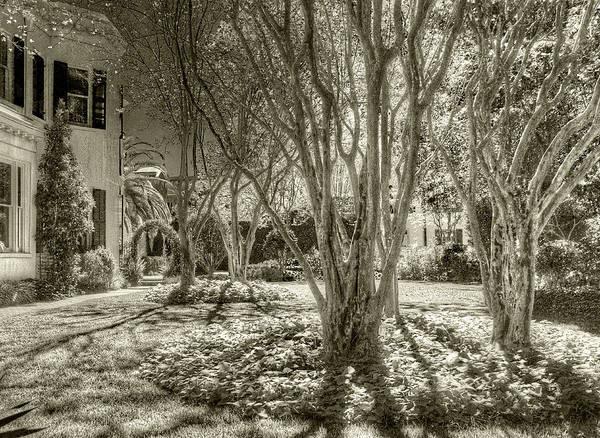 Photograph - Garden District Garden by Michael Kirk