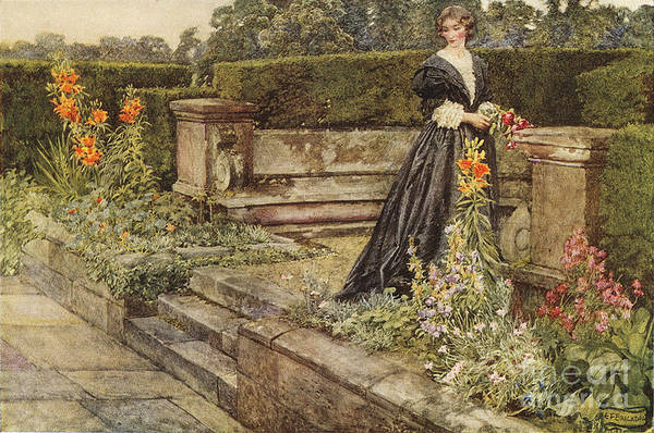 Painting - Garden Fancies The Flower's Name  by Celestial Images