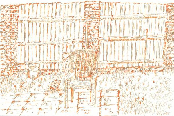 Drawing - Garden Fence  by Karen Jane Jones