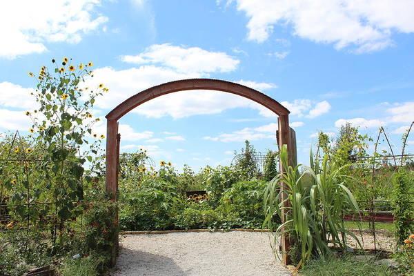 Wall Art - Photograph - Garden Gateway by Weathered Wood