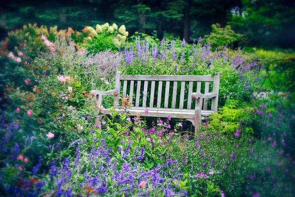 Respite Photograph - Garden Gifts II by Jessica Jenney