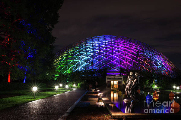 Photograph - Garden Globe At Night by Andrea Silies