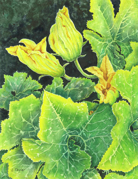Painting - Garden Glow by Lori Taylor