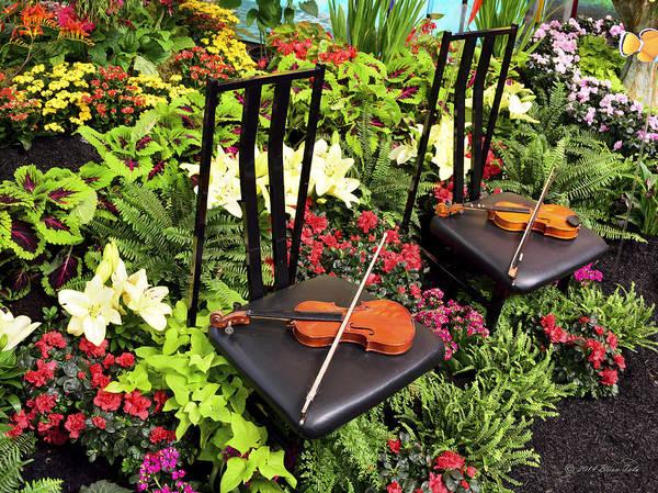 Azalia Photograph - Garden Harmony by Brian Tada
