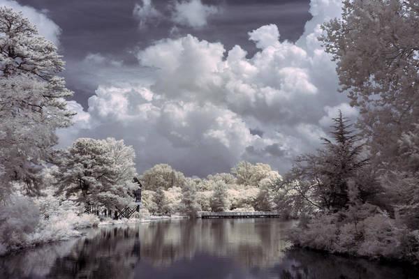 Photograph - Garden Lake In Infrared by Liza Eckardt