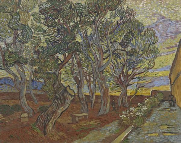 Painting - Garden Of The Asylum Saint Remy De Provence December 1889 Vincent Van Gogh 1853  1890 by Artistic Panda
