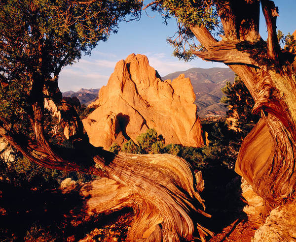 Wall Art - Photograph - Garden Of The Gods Co Usa by Panoramic Images