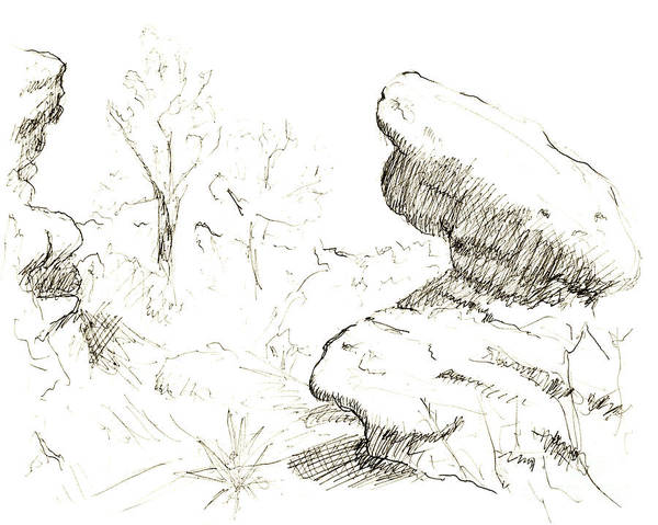 Wall Art - Drawing - Garden Of The Gods Rocks Along The Trail Ink Drawing By Adam Lon by Adam Long
