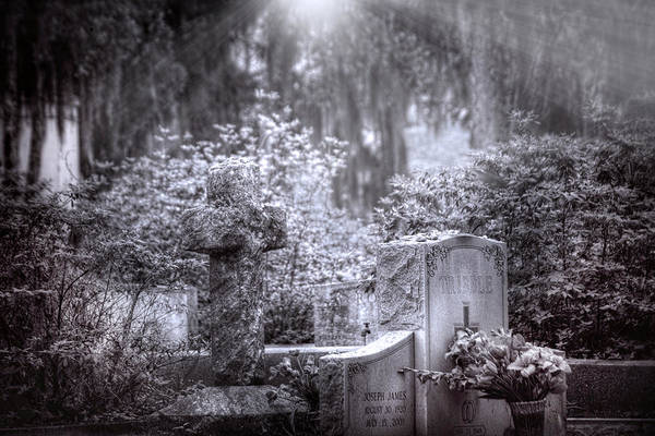 Famous Cemeteries Photograph - Garden Of Tranquility by Mark Andrew Thomas