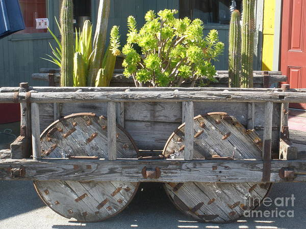 Garden On Wheels Art Print