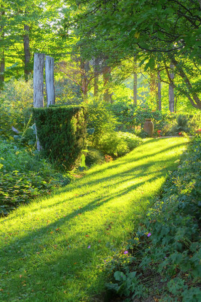 Photograph - Garden Path by Tom Singleton
