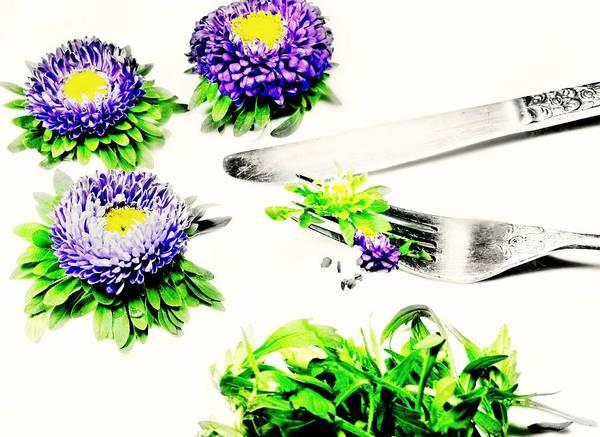 Wall Art - Photograph - Garden Salad by Diana Angstadt