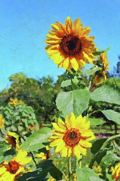 Photograph - Garden Series 0319 by Carlos Diaz