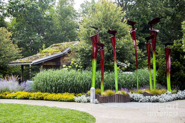 Photograph - Garden Shed With Pitcher Plant Sculpture by Allen Nice-Webb