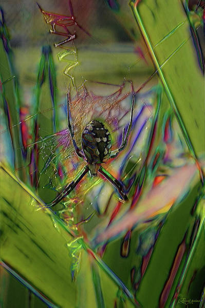 Digital Art - Garden Spider - Fractals by Ericamaxine Price