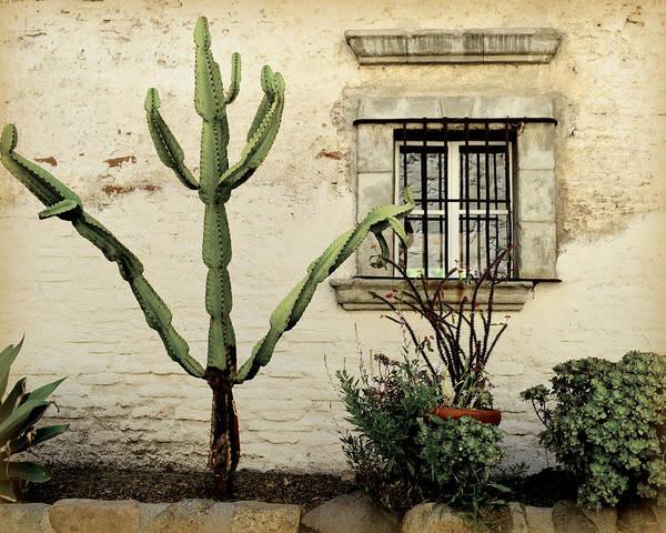 Photograph - Garden Still Life by Glenn McCarthy Art and Photography
