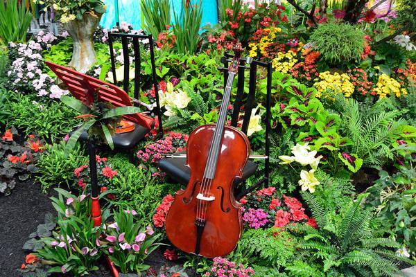 Azalia Photograph - Garden Symphony by Brian Tada
