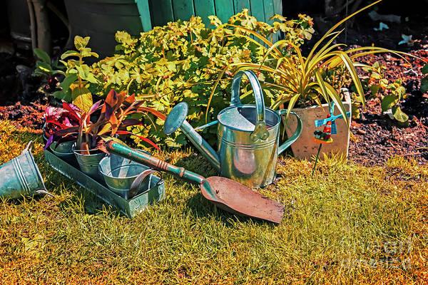 Photograph - Garden Tools by Ariadna De Raadt