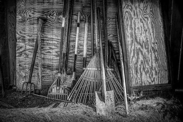 Photograph - Garden Tools by Bill Posner
