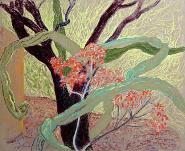 Trio Drawing - Garden Trio by Bonnie See