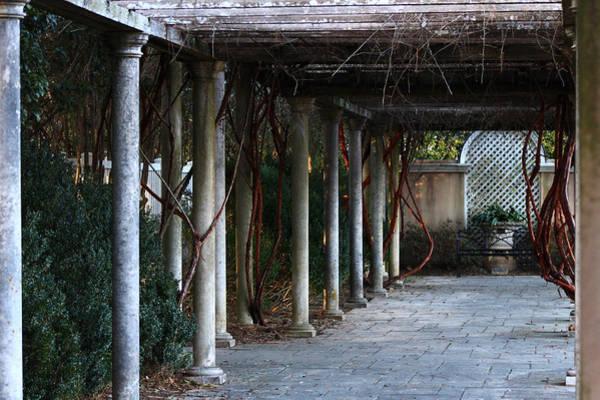 Wall Art - Photograph - Garden Walkway 2 by Kevin Wheeler