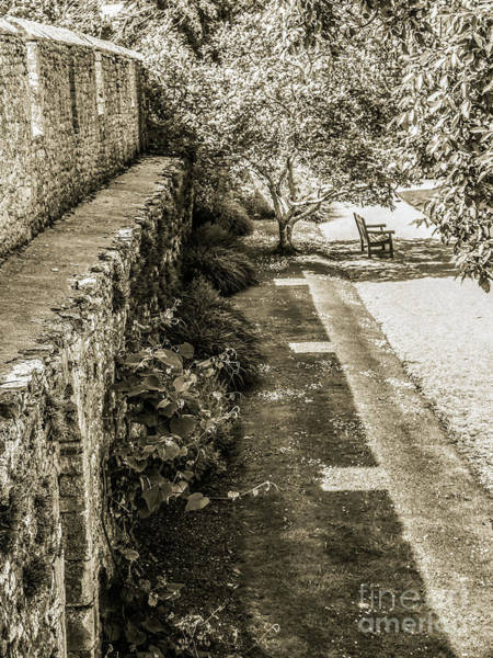 Photograph - Garden Walls - Bishops Palace Wells England by Lexa Harpell