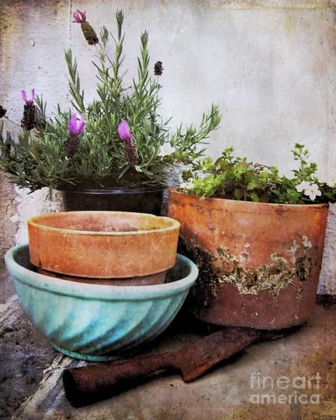 Photograph - Gardener's Corner by Patricia Strand