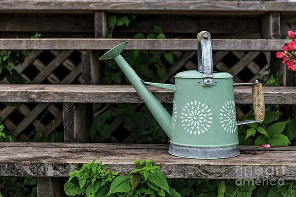 Photograph - Gardeners Friend by Edward Fielding