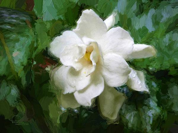 Digital Art - Gardenia Blossom by Ludwig Keck