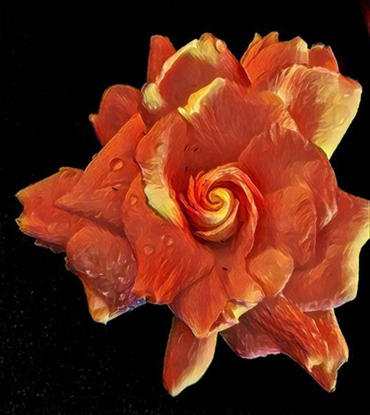 Gardenia For Madam Pele Art Print