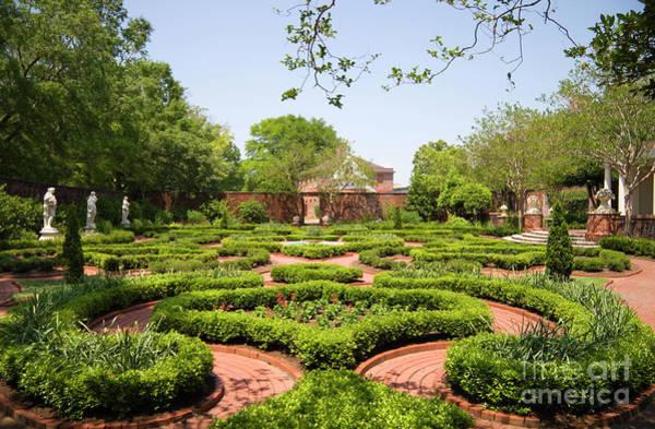 Photograph - Gardens At Tryon Palace by Jill Lang
