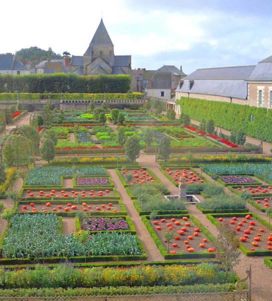 Villandry Photograph - Gardens Of Chateau Villandry by Ellen Meakin