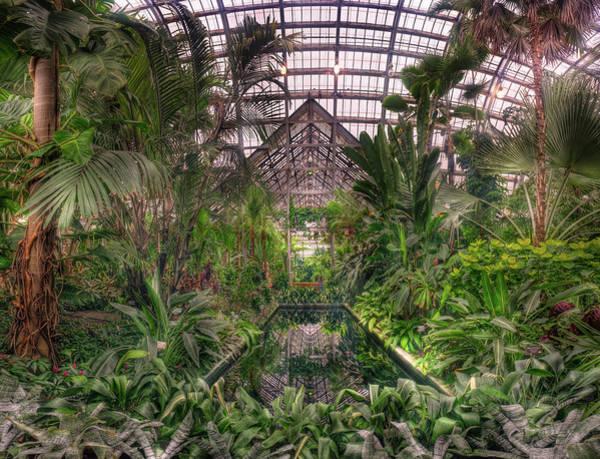 Conservatory Photograph - Garfield Park Conservatory Reflecting Pool by Steve Gadomski