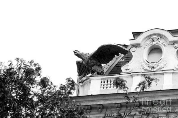 Photograph - Winged Gargoyle In Black And White by Angela Rath