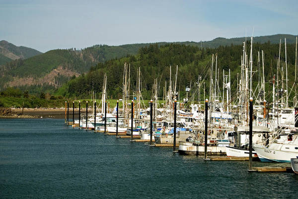 Photograph - Garibaldi Oregon Marina by Renee Hong