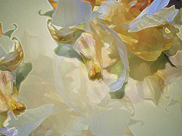 Photograph - Garlic Blossom Medley 2 by Lynda Lehmann
