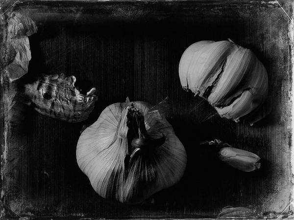 Photograph - Garlic by Bob Orsillo