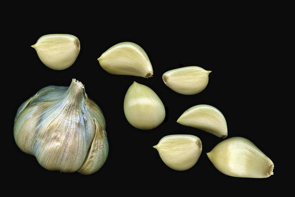 Bulb Photograph - Garlic Cloves by Tom Mc Nemar