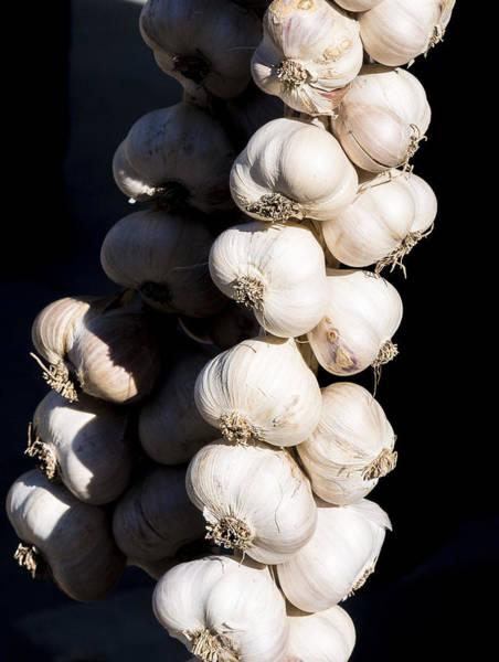 Photograph - Garlic by Steven Ralser