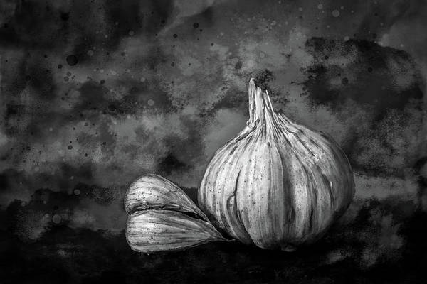 Photograph - Garlic Still Life In Black And White by Michael Arend