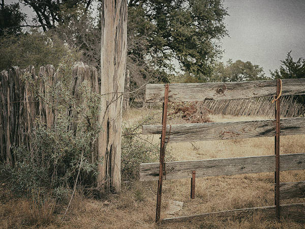 Photograph - Gate by Charles McKelroy