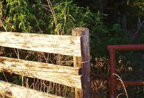 Fence Post Digital Art - Gate Post by Robert Habermehl