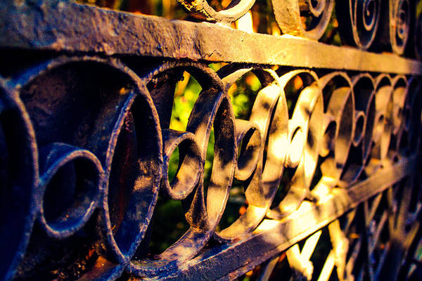 Photograph - Gate by Stacey Rosebrock